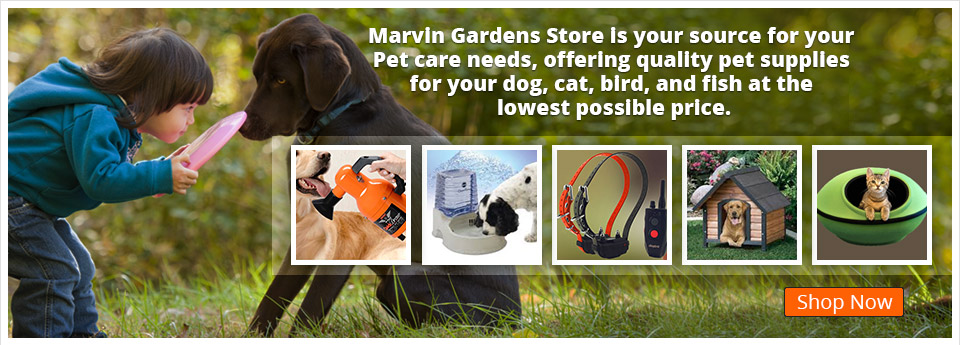 Shop Now - Pet Supplies
