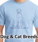 Click to Shop Dogs, Cats & Pets