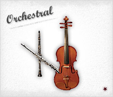 Click to Shop Orchestral Instruments