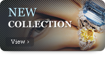 View Our New Collection - Click Here