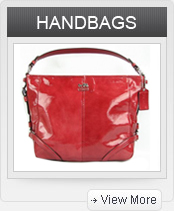 Click to Shop HANDBAGS