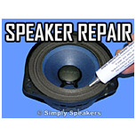 Click to Shop Speaker Repair