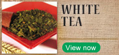 Click to Shop White Tea
